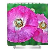Poppy Power Shower Curtain