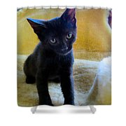 Posing  Shower Curtain