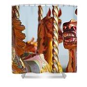 Pretty Carousel Horses Shower Curtain