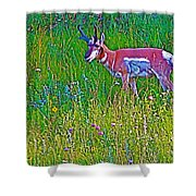 Pronghorn Among Wildflowers In Custer State Park-south Dakota Shower Curtain