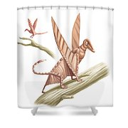 Pterandon, Illustration Shower Curtain