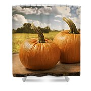Pumpkins Shower Curtain by Amanda Elwell