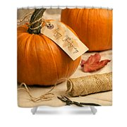 Pumpkins For Thanksgiving Shower Curtain