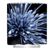 Q-tip Flower Shower Curtain