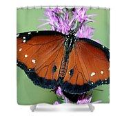 Queen Butterfly Shower Curtain