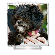 Ragamuffin Shower Curtain