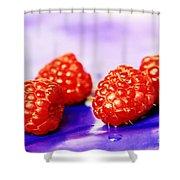 Raspberries Shower Curtain