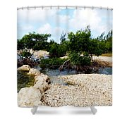 Reclamation 6 Shower Curtain