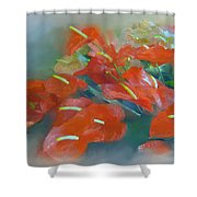 Red Anthurium Shower Curtain