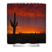 Red Desert Skies  Shower Curtain