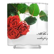 Red Fresh Roses On White Shower Curtain