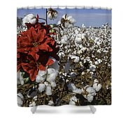Red In The Cotton  Shower Curtain