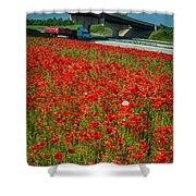 Red Poppy Field Near Highway Road Shower Curtain