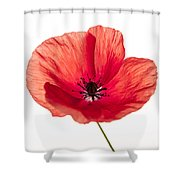 Red Poppy Flower Shower Curtain