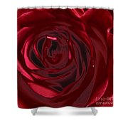 Red Rose Abstract 2 Shower Curtain