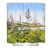 Reed Flowers Shower Curtain