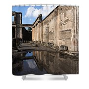 Reflecting On Pompeii Shower Curtain