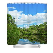 Reflection Of Trees And Clouds In South Shower Curtain