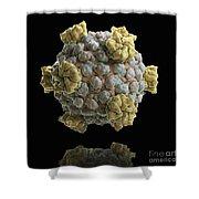 Reovirus Core Shower Curtain