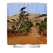 Road On Hierro Shower Curtain