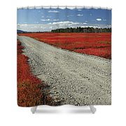 Road Through Autumn Blueberry Maine Shower Curtain by Scott Leslie