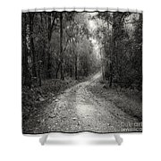 Road Way In Deep Forest Shower Curtain