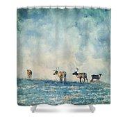 Roam Free Shower Curtain