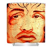 Rocky On Wall Shower Curtain