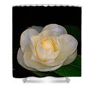 Romance In Bloom Shower Curtain