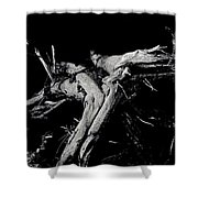 Roots 2 Shower Curtain