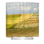 Rural Fields Shower Curtain