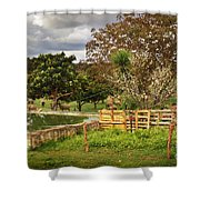 Rural Scene Shower Curtain by Carlos Caetano