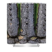 Saguaro Cactus Close-up Shower Curtain