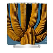 Saguaro Cactus Shower Curtain