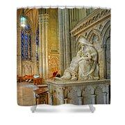 Saint Patricks Cathedral Shower Curtain