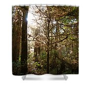 Save The Rain Forests Shower Curtain