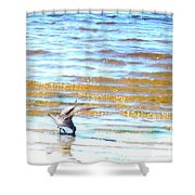 Sea Bird Shower Curtain