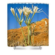 Sea Daffodil Shower Curtain