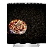 Sea Shell Shower Curtain