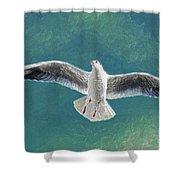 10427 Seagull In Flight Shower Curtain