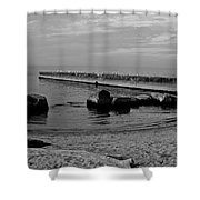 Seagull Serenity Shower Curtain
