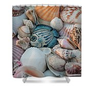 Seashells And Blue Fish Shower Curtain