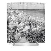 Seaside Grass Shower Curtain