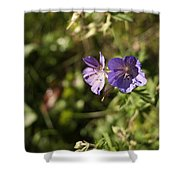 Seasons Finish Shower Curtain