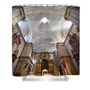 Seville Cathedral Interior Shower Curtain