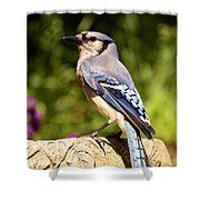 Shades Of Blue Shower Curtain by Lori Tambakis