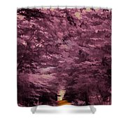 Shadow Path Shower Curtain