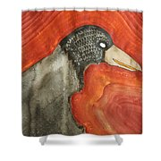 Shaman Original Painting Shower Curtain by Sol Luckman