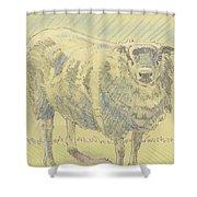 Sheep Sketch Shower Curtain