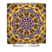 Kaleidoscope 43 Shower Curtain